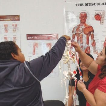 Medical Assistant students learn teamwork while exploring classroom aids.